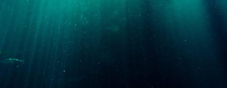 Podmořská hlubina v tmavěmodré s jednou rybou